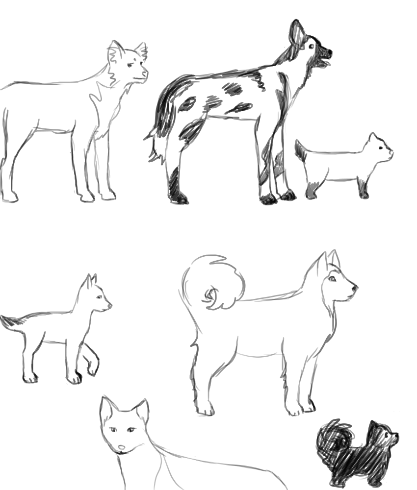 From left to right: Kutta, Mhumhi, Sacha, Kebero, Biscuit, Sundu, Mini. By Kaon4shi.