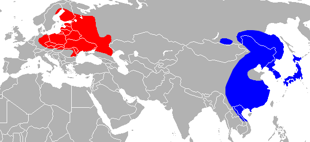 The range of the raccoon dog. Blue is ancestral range, red is introduced. Europeans originally imported raccoon dogs for their fur.