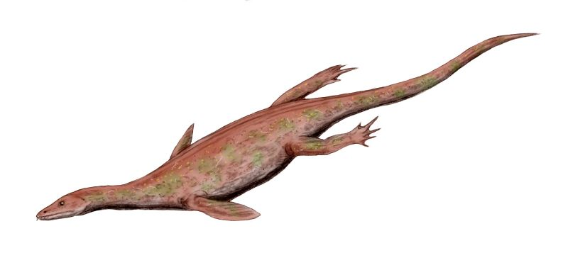 Lariosaurus, a nothosaur with fully-developed front flippers.