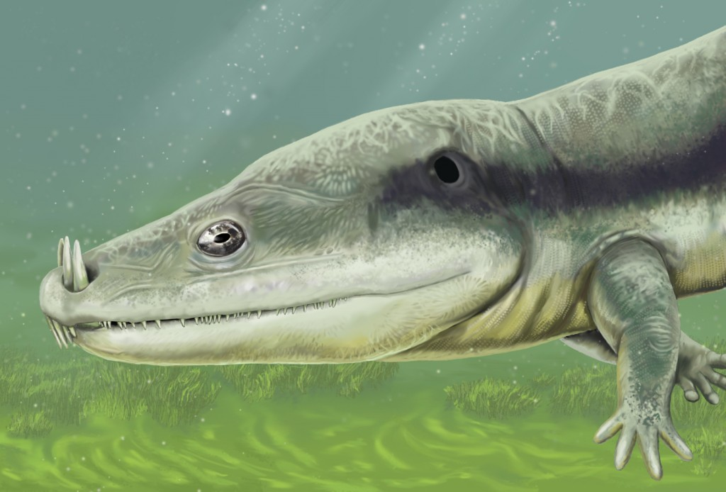 The marine amphibian Microposaurus was still around, though. Thank goodness. (Image source.)
