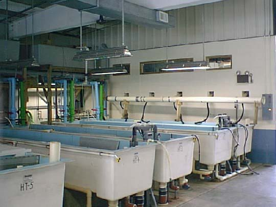Aquatic research or cultivation facilities generally use flow-through water cycling.
